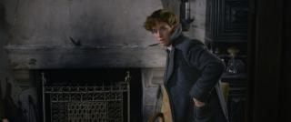 Fantastyczne zwierzęta Zbrodnie Grindelwalda - kadr ze zwiastuna