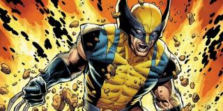 Wolverine - wraz z nim także jego syn, Daken, jak i X-23