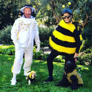 Jesse Tyler Ferguson jako pszczelarz