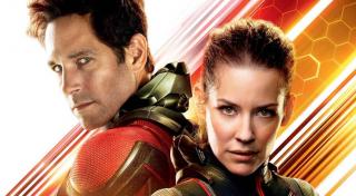 """Gdy Ant-Man i Wasp operują na polu bitwy, Kapitan Ameryka przydziela im misję z dotarciem do auta. Kobieta mówi wówczas: """"We're on it, Cap"""", po czym wymownie uśmiecha się w kierunku Langa. Przypomnijmy, że w filmie """"Ant-Man i Osa"""" Hope nabijała się ze Scotta, który nie do końca dobrze radził sobie z tym, iż pozwala ona sobie nazywać Rogersa korzystając z tego, """"zarezerwowanego dla przyjaciół"""", pseudonimu."""