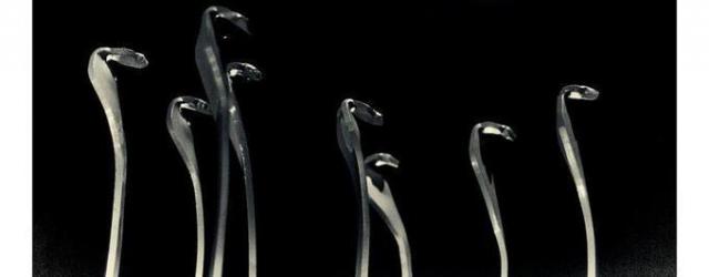 Rozdano nagrody Węże dla najgorszych polskich filmów