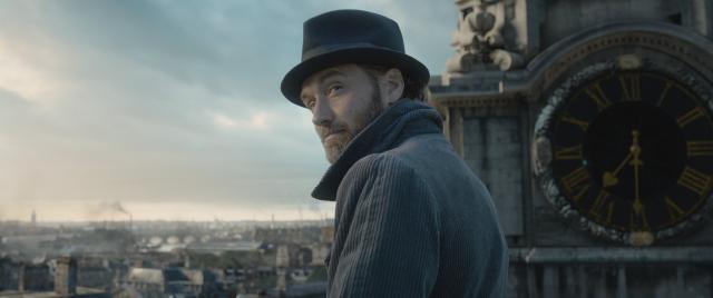 Jude Law potwierdza – orientacja Dumbledore'a nie będzie tematem Fantastycznych zwierząt 2