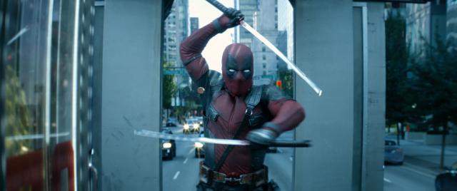 Deadpool został muchą. Owad nazwany na cześć antybohatera [ZDJĘCIE]