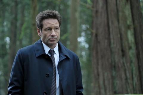 David Duchovny kończy 60 lat! Ile niedoszły doktor ma wspólnego z Hankiem Moodym?