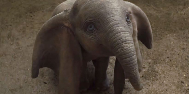 Box Office: Dumbo pokonuje To my. Kapitan Marvel na podium