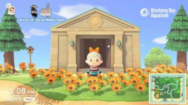 Amerykańskie oceanarium organizuje wycieczki w Animal Crossing