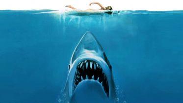 Szczęki - ponadczasowy podwodny koszmar, który wciąż wywołuje ciarki na plecach