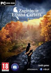 Zaginięcie Ethana Cartera