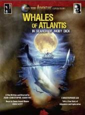 Les baleines de l'Atlantide