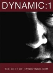 Dynamic: 01 – Seria Davida Lyncha