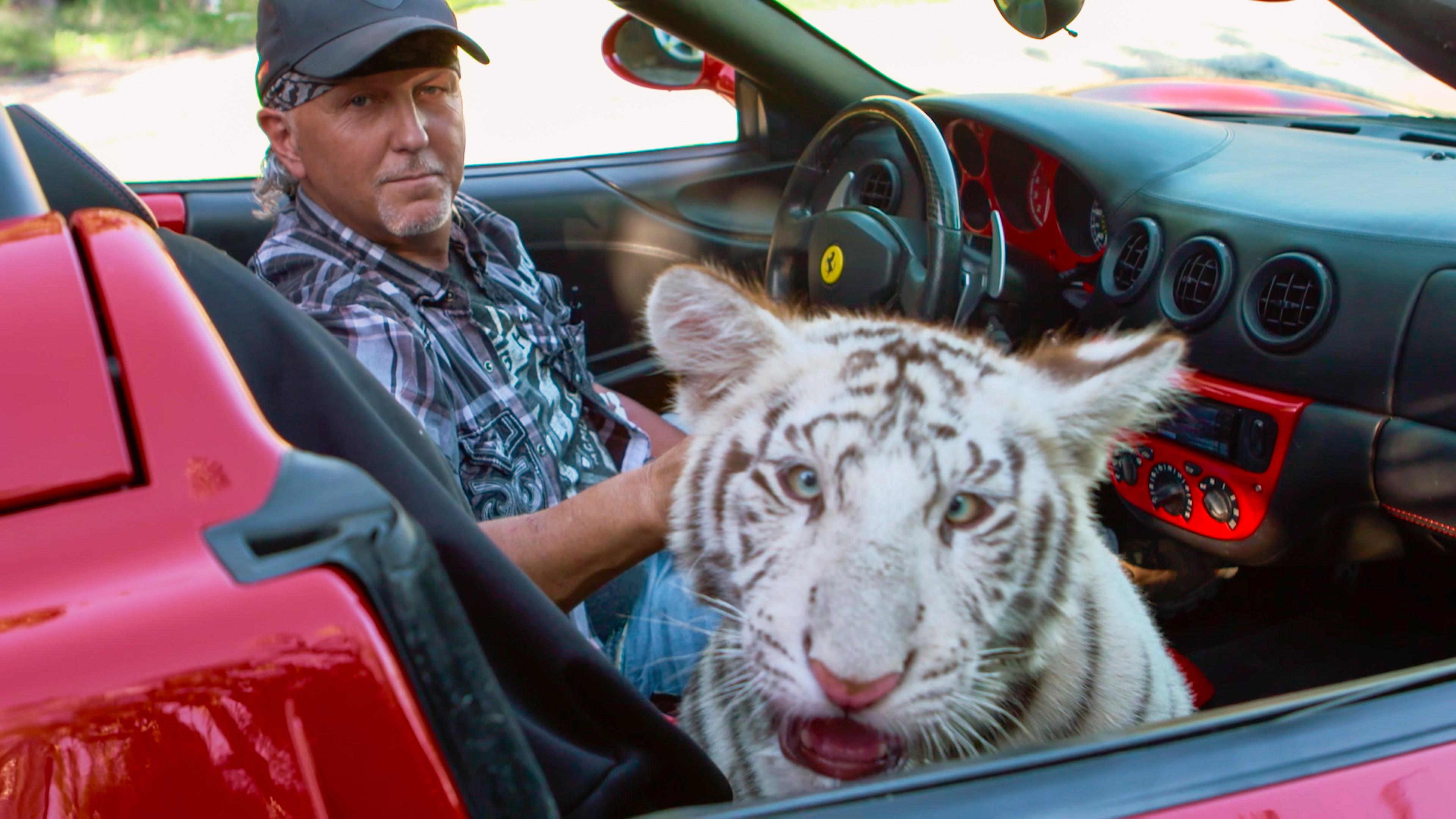 Król tygrysów